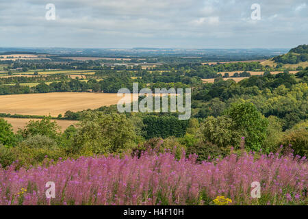 Watlington Hill, The Chilterns, Oxfordshire, England - Stock Photo