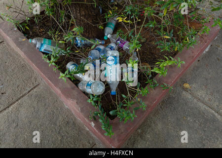 Empty Plastic Water Bottles around a tree - Stock Photo