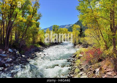 alpine river and yellow aspen in Colorado - Stock Photo