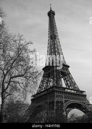 Paris France Eiffel Tower Black And White