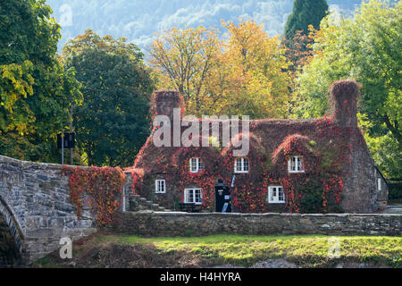 Tu Hwnt I'r Bont Tearooms in picturesque 15th century cottage by old Pont Fawr bridge over Afon Conwy River in autumn. - Stock Photo