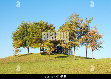 Arbour among the  trees in on the hill - Stock Photo