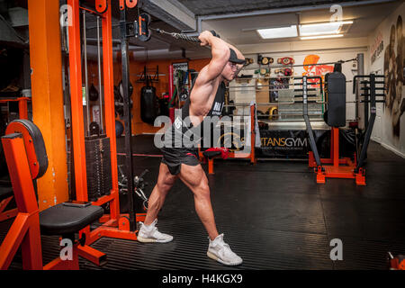 bodybuilder exercising in the gym - Stock Photo