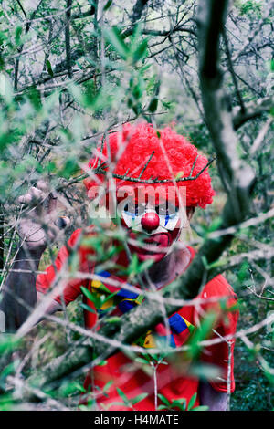 closeup of a scary evil clown in the woods, seen through the branches of a tree - Stock Photo