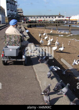 Feeding the birds, Gravesend. - Stock Photo
