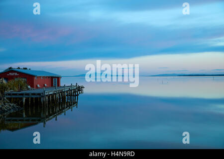 Jellicoe Sea Scout Building and reflections in New River Estuary at dusk, Invercargill, Southland, South Island, - Stock Photo