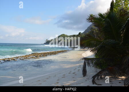Seychelles forest blue ocean waves clear sky footprints - Stock Photo