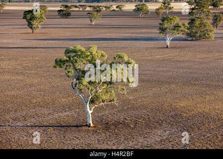 low altitude areial photograph of farm land near Horsham, Western Victoria, Australia - Stock Photo