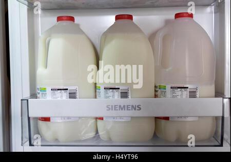 Bottles of skimmed milk in a Siemens refrigerator - Stock Photo