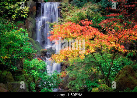 Fall color with waterfall in Japanese Gardens. Portland. Oregon - Stock Photo