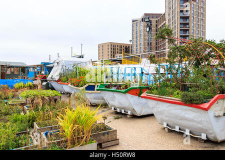 The Skip Garden, a community garden providing a green oasis in the middle of the King's Cross development, London, - Stock Photo
