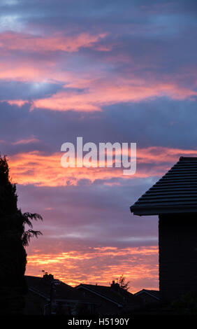 Chorley, UK. 19th Oct, 2016. Fantastic sunset in Chorley tonight as the weather turned fine. Credit:  Iain Barker/Alamy - Stock Photo