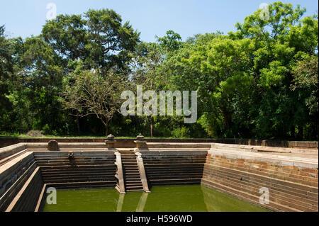 Kuttam Pokuna, Twin Ponds, Anuradhapura, Sri Lanka - Stock Photo