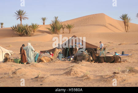 Camping in the Dunes. Camel trek in the Sahara Desert near Zagora in Southerm Morocco. Shows camels, tribesmen and - Stock Photo