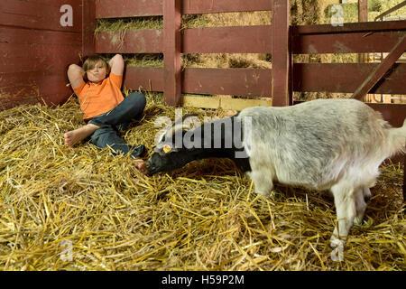 young boy reclining in straw shed, children´s farm Kirchdorf, Hamburg, Germany - Stock Photo