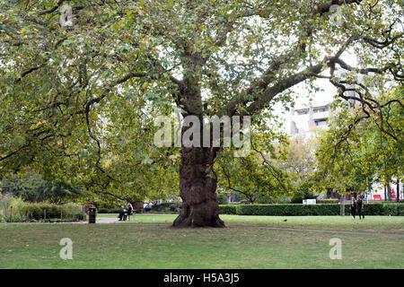 Brunswick Square Gardens, London, UK - Stock Photo