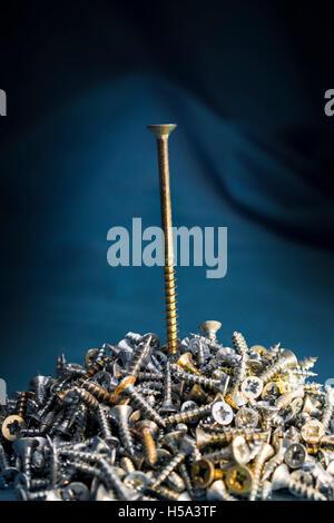 Screw screwed on pile of small screws on dark background - Stock Photo