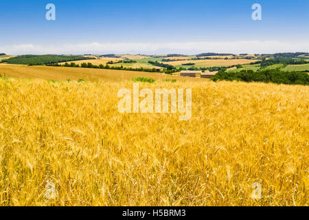 Landscape near Toulouse, France - Stock Photo