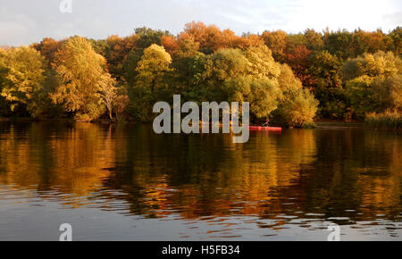 Berlin, Germany. 20th Oct, 2016. Autumn leaves and a canoeist reflected by the water of the Stoessensee lake in - Stock Photo