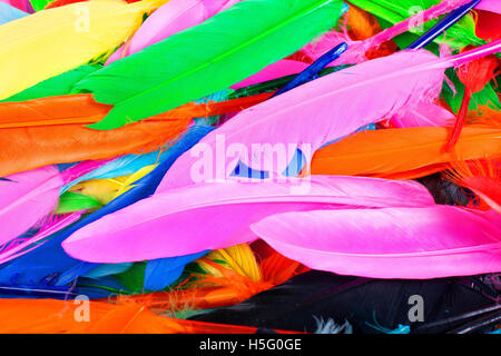 Texture Background From Rainbow Colors Creative Hobby Tools Real Colored Bird Feathers For Dresses Decorations Or Any Other Use