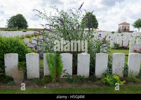 A view of gravestones at Dantzig Alley British Cemetery, Mametz. - Stock Photo