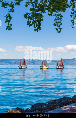 Tree framed scene of traditional sailing boats on Lake Geneva, Évian-les-Bains, France - Stock Photo