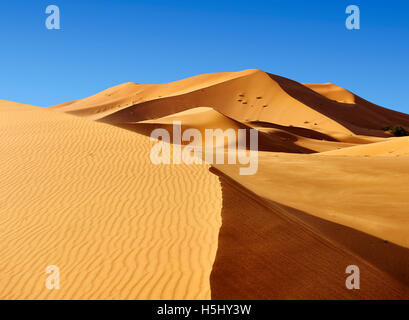 Sahara sand dunes of erg Chebbi, Merzouga Morocco, Africa - Stock Photo