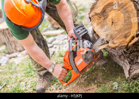 Worked cutting a tree with a chainsaw - Stock Photo
