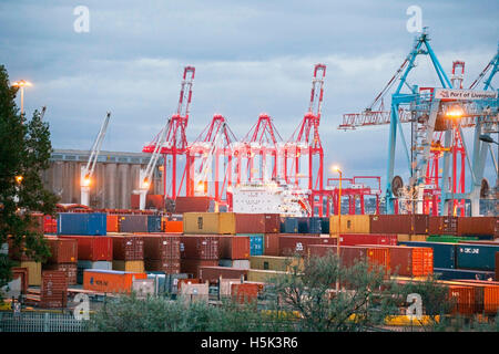 British exports and imports being unloaded and loaded at Seaforth Docks, Container port,  Liverpool2, Merseyside, - Stock Photo