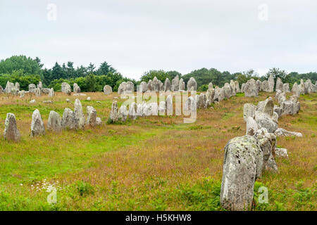 scenery around the  Carnac stones, a megalithic site in Brittany, France - Stock Photo