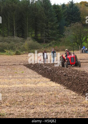 Spectators watch a farmer in action at Ashover Ploughing Match, Highoredish Farm, Derbyshire - Stock Photo