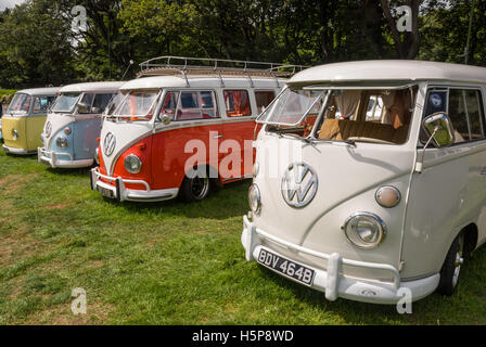 A line of split screen VW camper vans on show at Paignton Green with trees in the background - Stock Photo