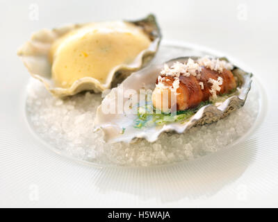 hors d'oeuvres with oyster - Stock Photo
