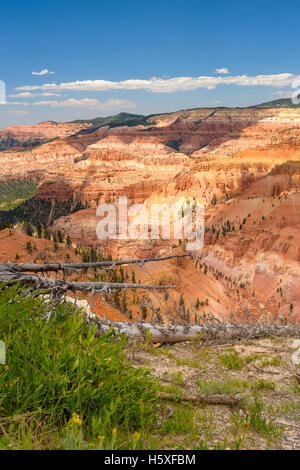 Cedar Breaks National Monument, Utah, sits at over 10,000 feet and looks down into a half-mile deep geologic amphitheater. - Stock Photo