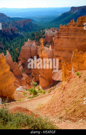 Sunrise and scenic views of the Amphitheater, Bryce Canyon National Park, located Utah, in the Southwestern United - Stock Photo