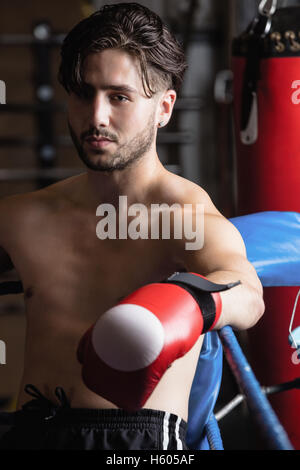 Portrait of boxer in boxing gloves - Stock Photo