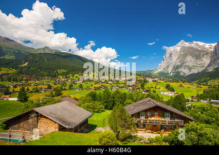 Grindelwald valley, green forest, Alps chalets and Swiss Alps (Schreckhorn, Berglistock and Wetterhorn) in Swiss - Stock Photo