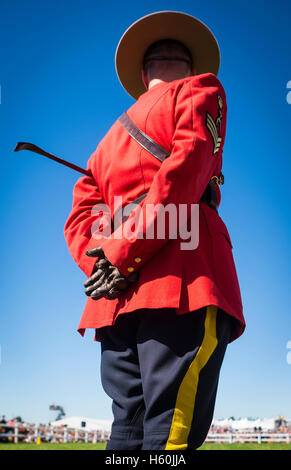 Royal Canadian Mounted Police Officer stands during a ceremony in Minto, Ontario, Canada - Stock Photo