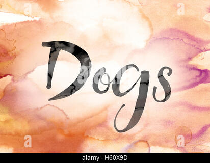 The word 'Dogs' painted in black ink over a colorful watercolor washed background concept and theme. - Stock Photo
