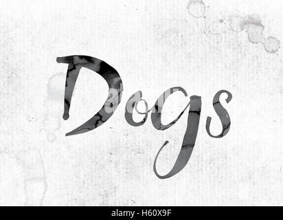 The word 'Dogs' concept and theme painted in watercolor ink on a white paper. - Stock Photo