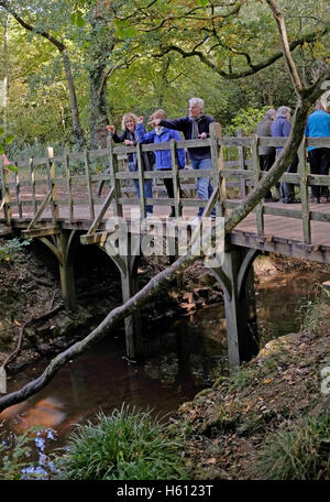 People playing pooh sticks game at The famous Pooh Bridge in the heart of Ashdown Forest Sussex UK - Stock Photo