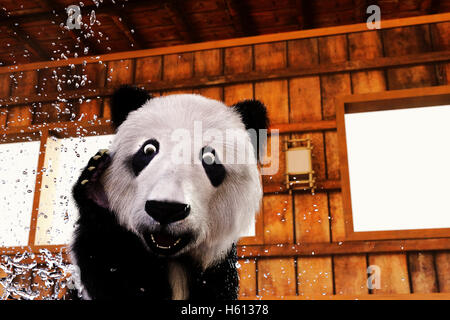 A Panda Bear is surprised at something in bath - Stock Photo
