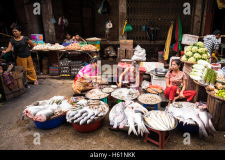 Women selling fresh fish at their street market stall in Downtown Yangon. - Stock Photo
