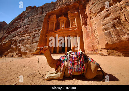 View of the Treasury, Al-Khazneh with camels, Petra, Jordan - Stock Photo