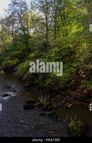 The river Almond in Livingston, West Lothian, in autumn - Stock Photo