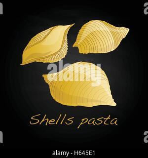 Pasta - Conchiglioni 'Shell Pasta' vector isolated - Stock Photo