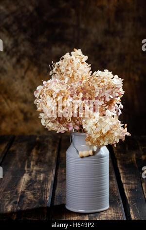 Dried hydrangea bouquet in milk churn as vase - Stock Photo