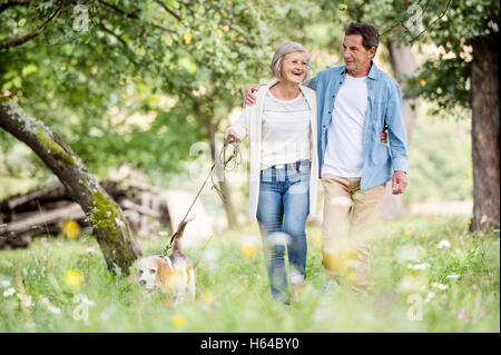 Senior couple on a walk with dog in nature - Stock Photo