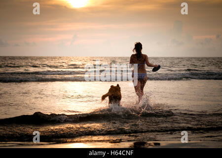 Mexico, Nayarit, Young woman in bikini playing frisbee with her Golden Retriever dog at the beach, running into - Stock Photo