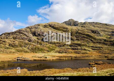 Upland pool near Bwlch y Battel below Cnicht mountain in Snowdonia National Park in autumn. Gwynedd Wales UK Britain - Stock Photo